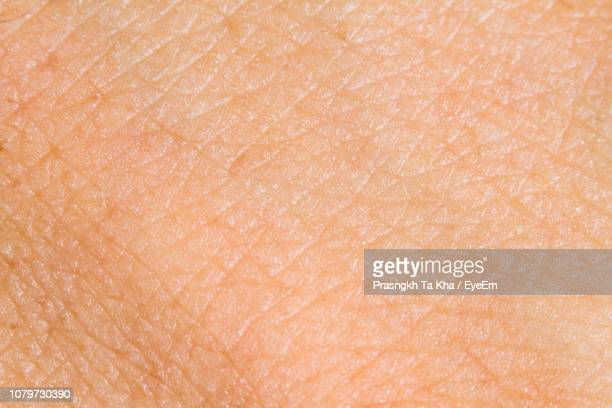 full frame shot of human skin - human skin stock pictures, royalty-free photos & images