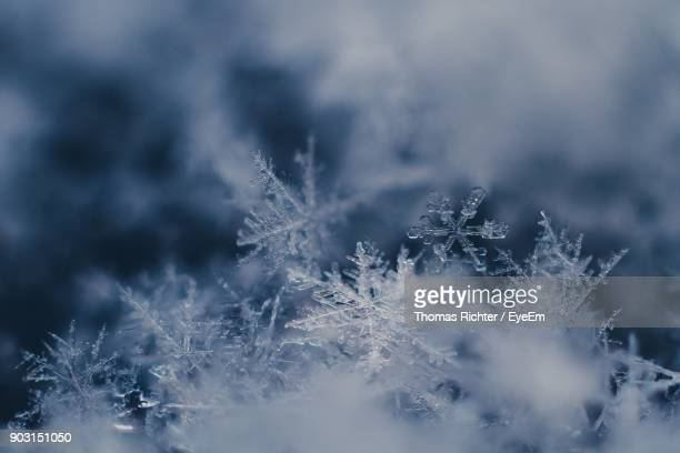 full frame shot of ice - snowflakes stock photos and pictures