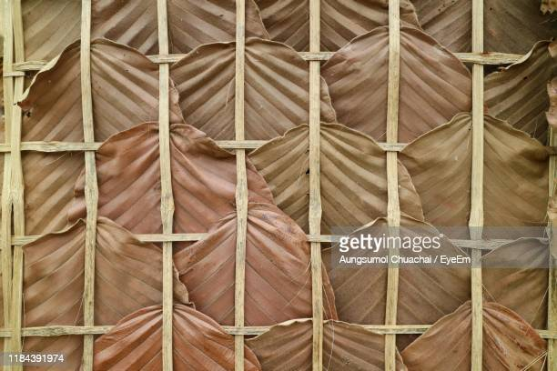 full frame shot of leaves and wood - aungsumol stock pictures, royalty-free photos & images