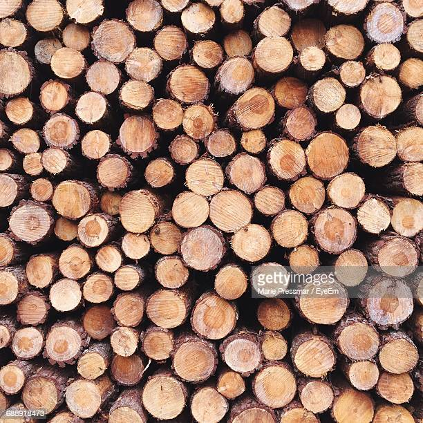 full frame shot of log - log stock pictures, royalty-free photos & images