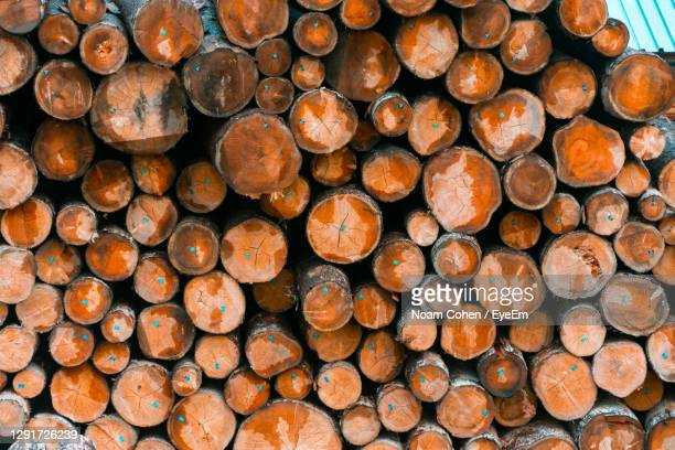 full frame shot of logs in forest - vaduz stock pictures, royalty-free photos & images