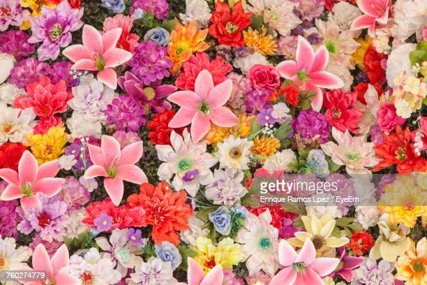 full frame shot of multi colored flowers - flower wallpaper stock pictures, royalty-free photos & images