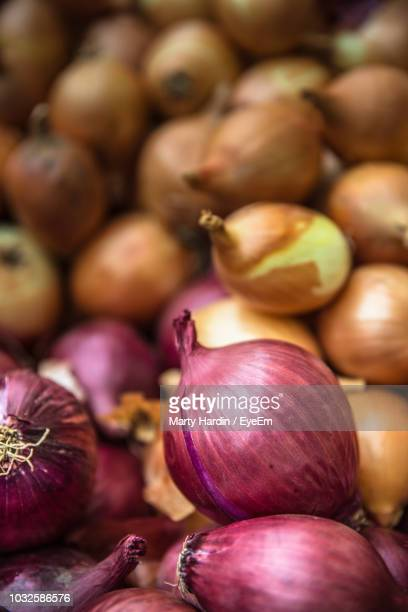 full frame shot of onions - marty hardin stock photos and pictures