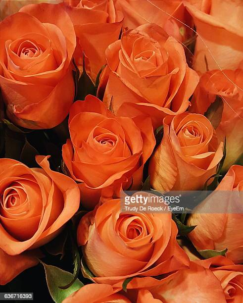 Full Frame Shot Of Orange Roses In Bouquet