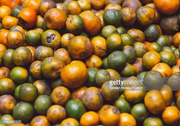 full frame shot of oranges - bortes stock pictures, royalty-free photos & images