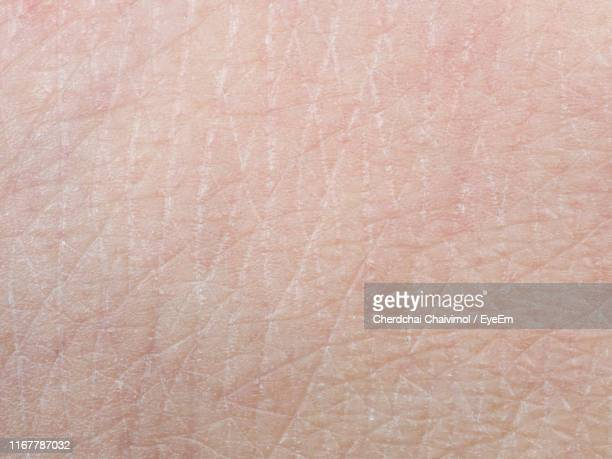 full frame shot of person skin - human skin stock pictures, royalty-free photos & images