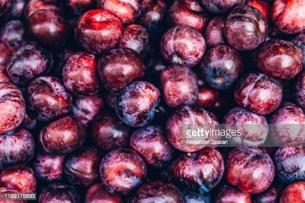 full frame shot of plums - ciruela fotografías e imágenes de stock