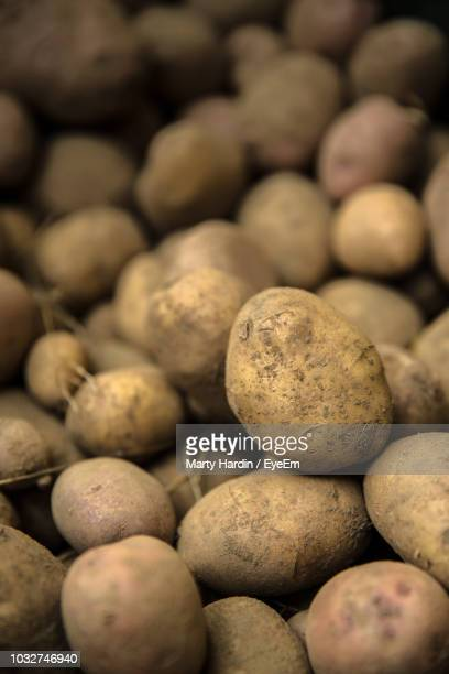 full frame shot of potatoes - marty hardin stock photos and pictures