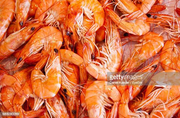 Full Frame Shot Of Prawns For Sale At Fish Market