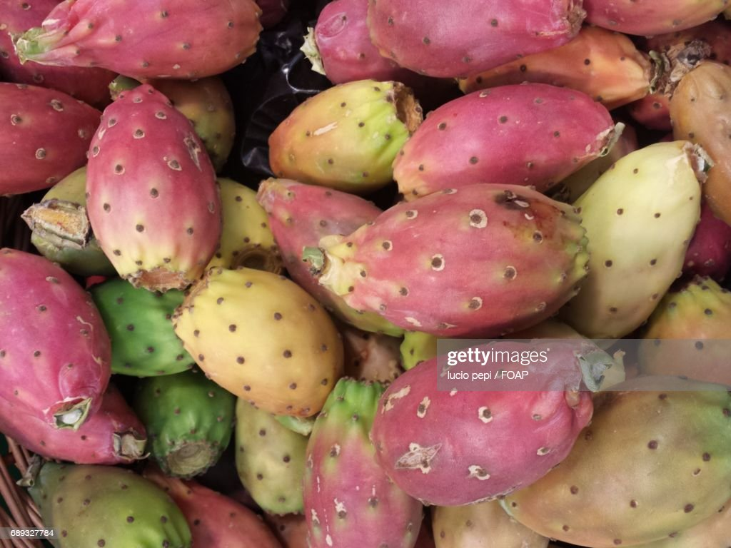 Full frame shot of prickly pear cactus : Stock Photo