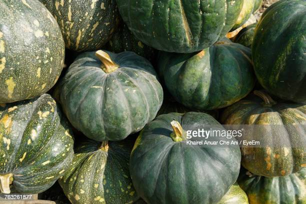 full frame shot of pumpkins at market - frische stockfoto's en -beelden