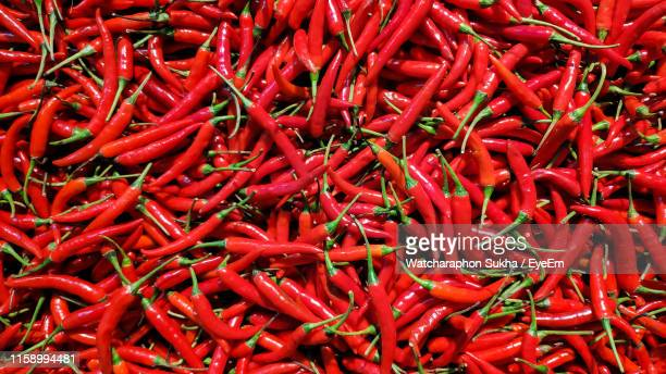 full frame shot of red chili peppers for sale at market stall - pimentão legume - fotografias e filmes do acervo