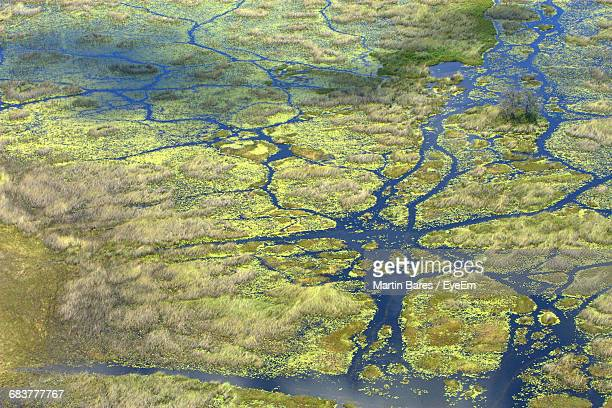 Full Frame Shot Of River Delta