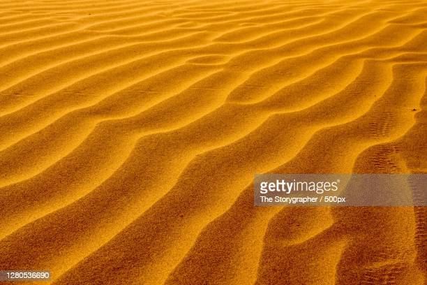 full frame shot of sand dune, kanoi, rajasthan, india - the storygrapher stock pictures, royalty-free photos & images