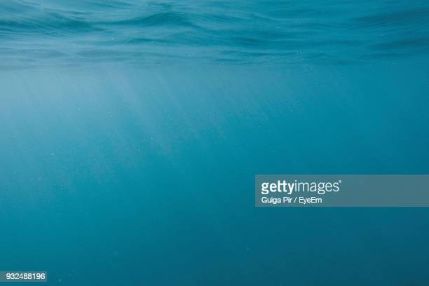 full frame shot of sea - underwater stock pictures, royalty-free photos & images