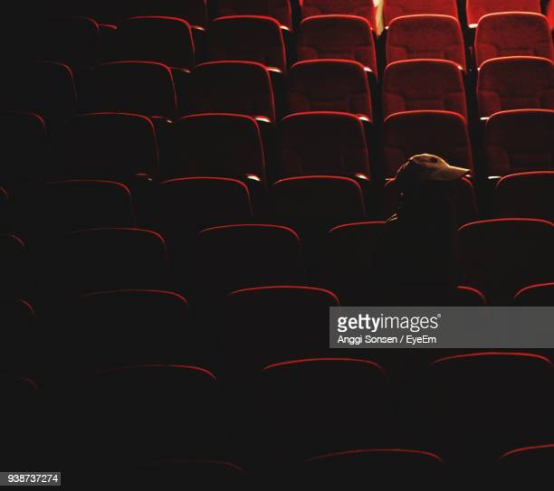 World S Best Movie Theater Seat Silhouette Stock Pictures Photos And Images Getty Images