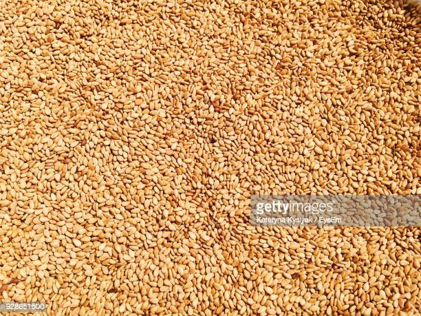 full frame shot of sesame seeds - sesame stock pictures, royalty-free photos & images