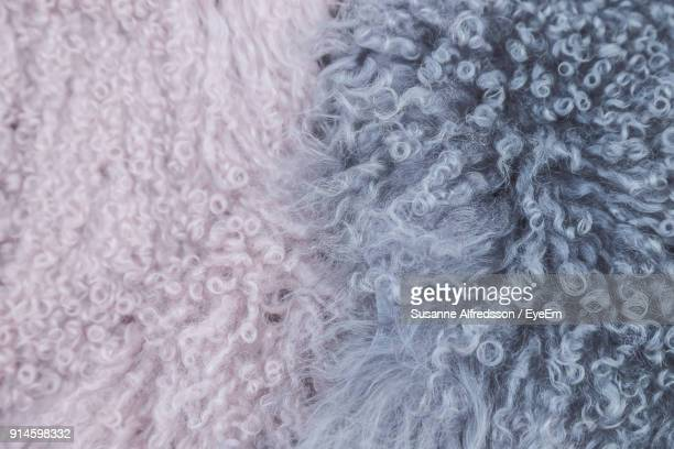 full frame shot of sheep wool - laine photos et images de collection