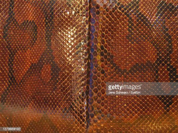 full frame shot of snake bag - brown stock pictures, royalty-free photos & images