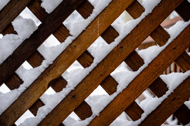Full frame shot of snow covered wood,Avery,California,United States,USA