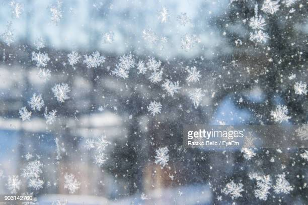 full frame shot of snowflakes on glass - snowflakes stock photos and pictures