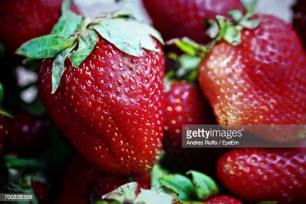 full frame shot of strawberries - andres ruffo stock-fotos und bilder