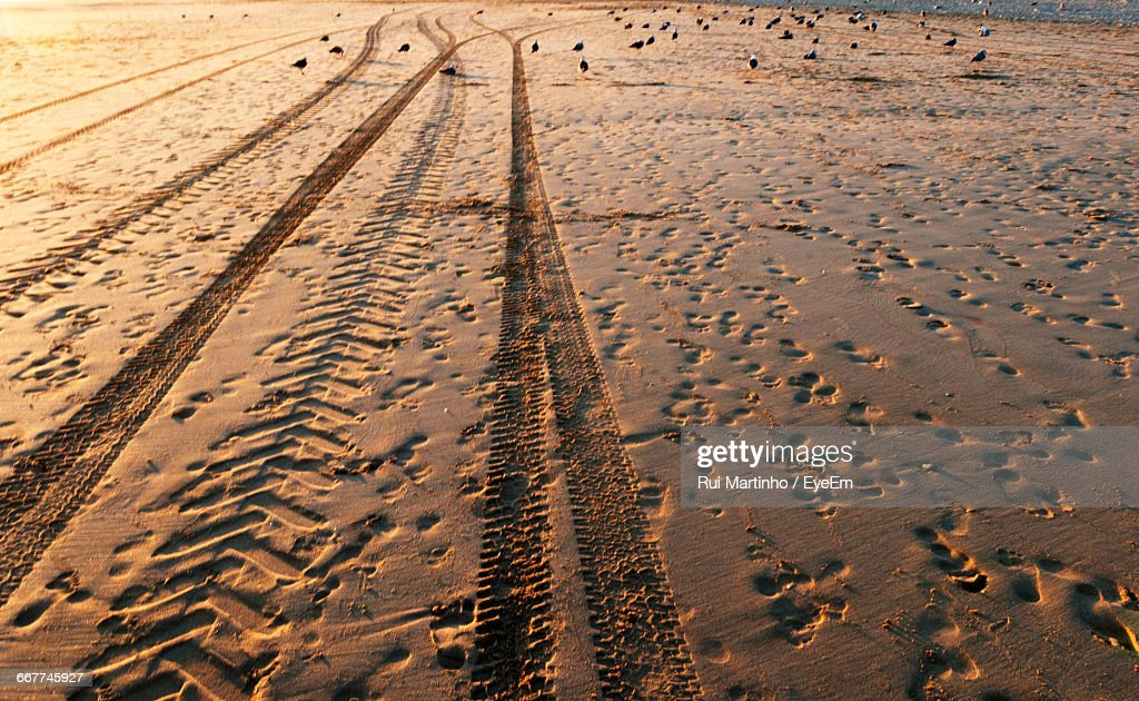 Full Frame Shot Of Tire Tracks And Footprints On Wet Sand During ...