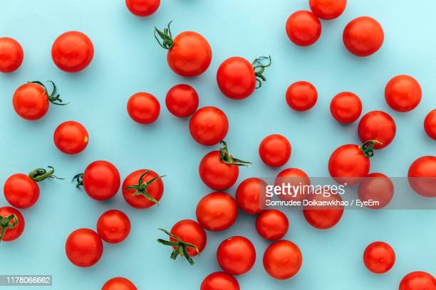 full frame shot of tomatoes against blue background - tomato stock pictures, royalty-free photos & images