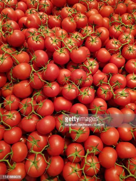 full frame shot of tomatoes for sale in market - tomato stock pictures, royalty-free photos & images