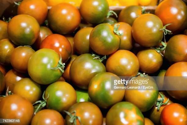 full frame shot of unripe tomatoes - unripe stock photos and pictures