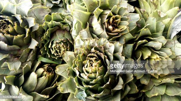 full frame shot of vegetables - salah stock photos and pictures