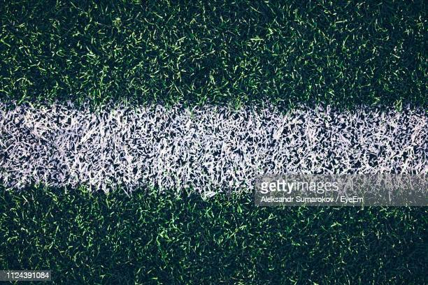 full frame shot of white line on soccer field - turf stock pictures, royalty-free photos & images