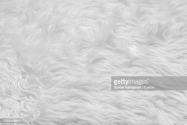 Full Frame Shot Of White Rug