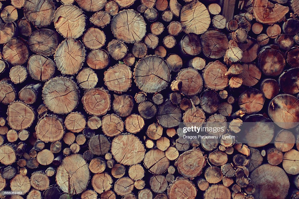 Full Frame Shot Of Wooden Logs In Forest Stock Photo | Getty Images