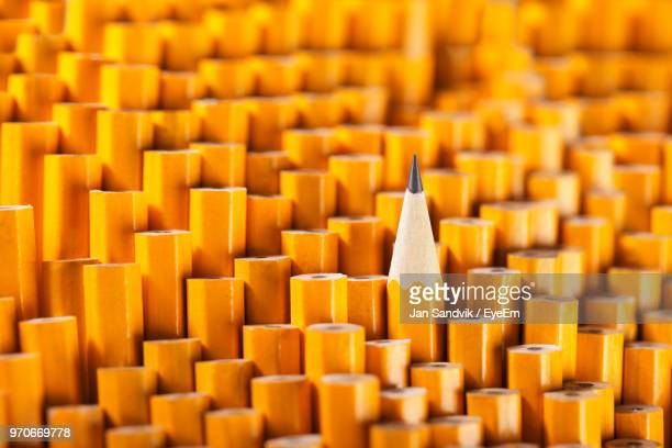 full frame shot of yellow pencils - standing out from the crowd stock pictures, royalty-free photos & images