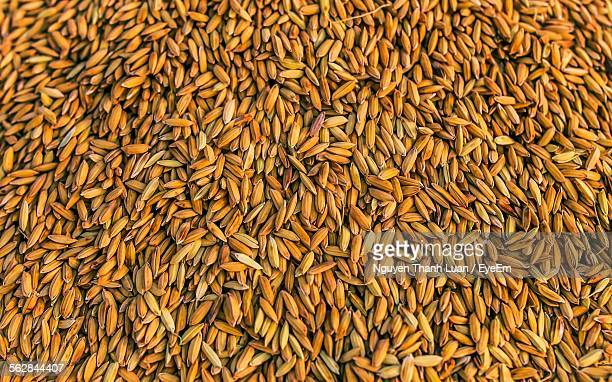 Full Frame Shot Of Yellow Rice Seeds