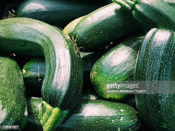 full frame shot of zucchini - zucchini stock pictures, royalty-free photos & images
