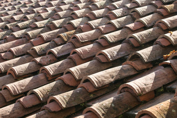 Full Frame Texture of Roof Tiles