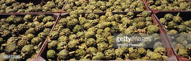 full frame view of artichokes in crates - timothy hearsum stock-fotos und bilder