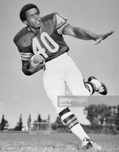 Full length Gayle Sayers football player for Chicago bears Shown here getting ready to throw the football