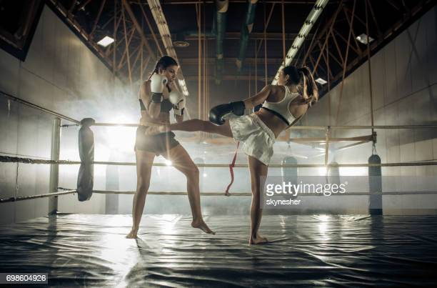full length of athletic women fighting on a kickboxing match in a health club. - muay thai imagens e fotografias de stock