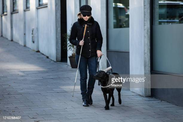 full length of blind woman with guide dog walking on street in city - 盲導犬 ストックフォトと画像