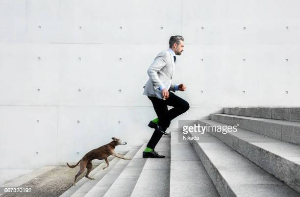 full length of businessmen running on steps with dog - stufen stock-fotos und bilder