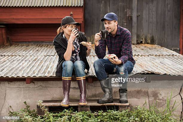 full length of couple having breakfast on corrugated iron at farm - gummistiefel frau stock-fotos und bilder