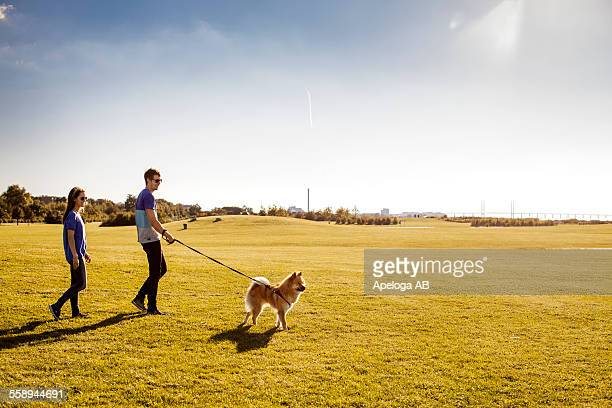 Full length of couple with dog walking at park on sunny day
