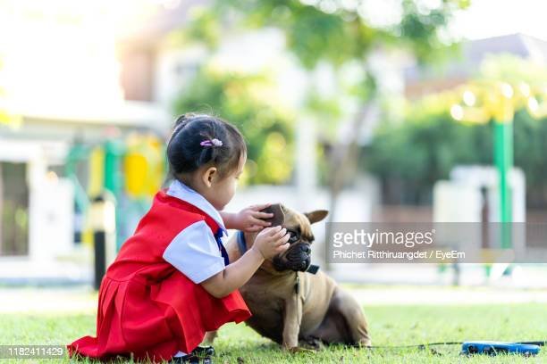 full length of cute girl with dog outdoor - phichet ritthiruangdet stock photos and pictures