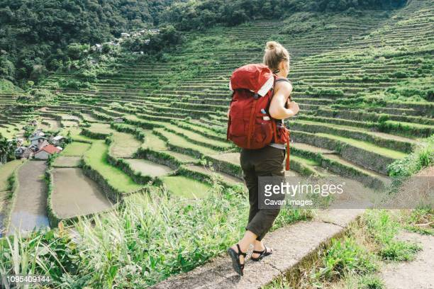 full length of female hiker with backpack walking on terrace field in village - terraced field stock pictures, royalty-free photos & images