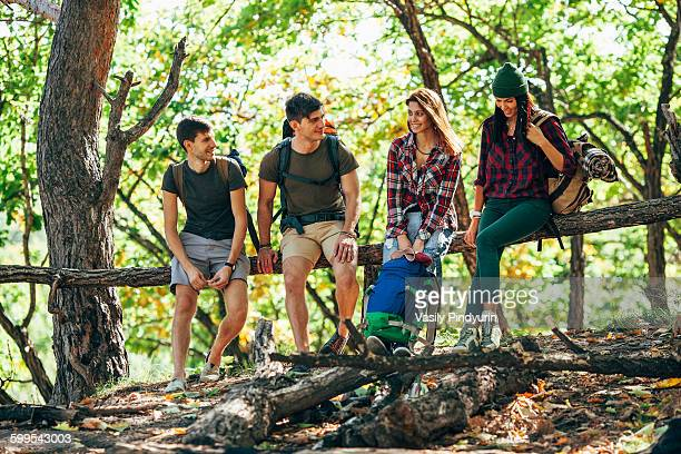 Full length of friends sitting on wooden log in forest
