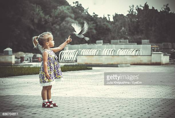Full Length Of Girl Pointing At Bird While Standing On Street