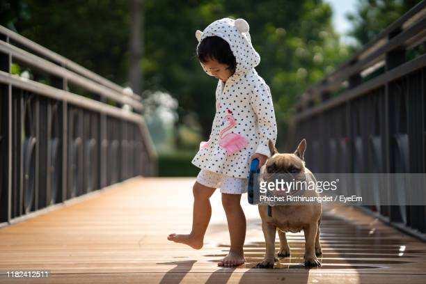 full length of girl walking with dog on footbridge - phichet ritthiruangdet stock photos and pictures